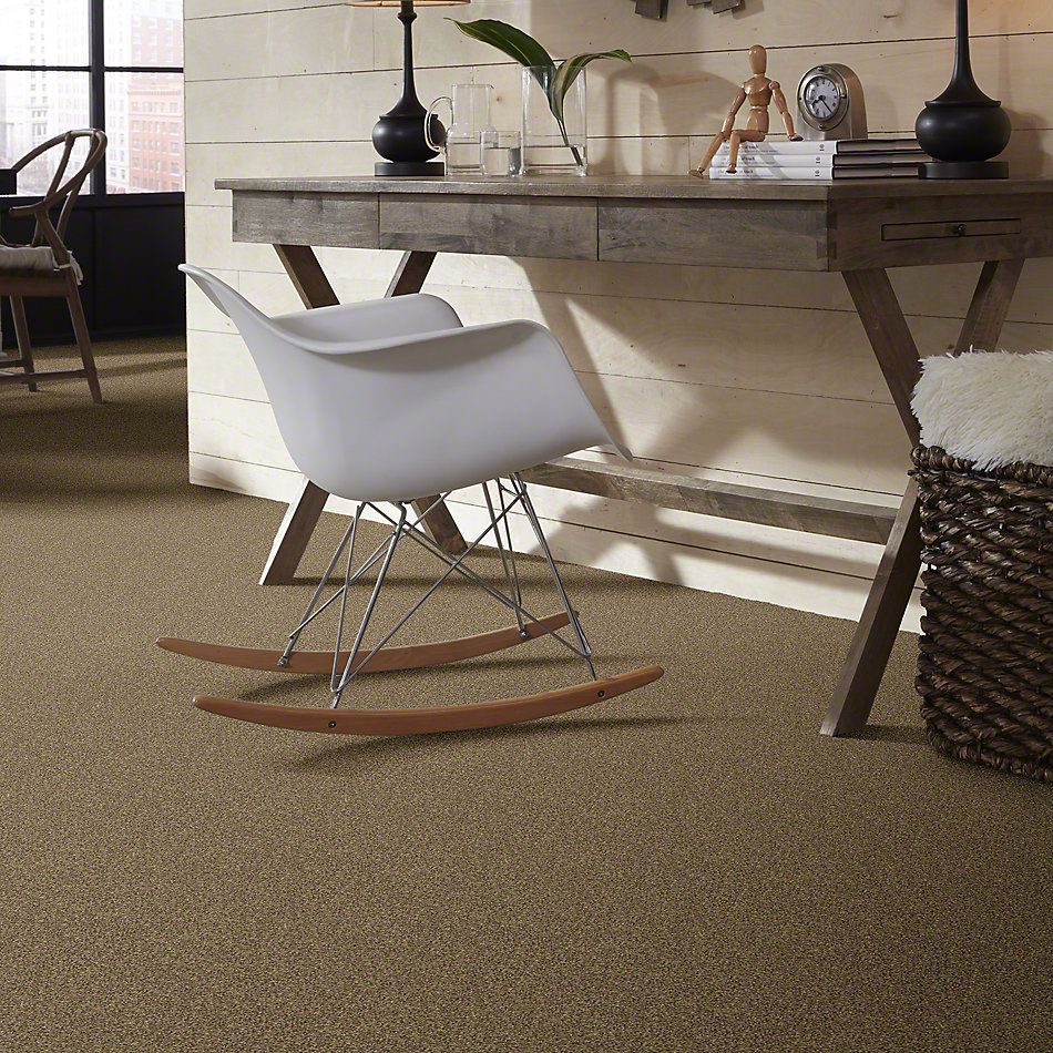 Shaw Floors Anso Colorwall Platinum Twist Latte 00760_EA576