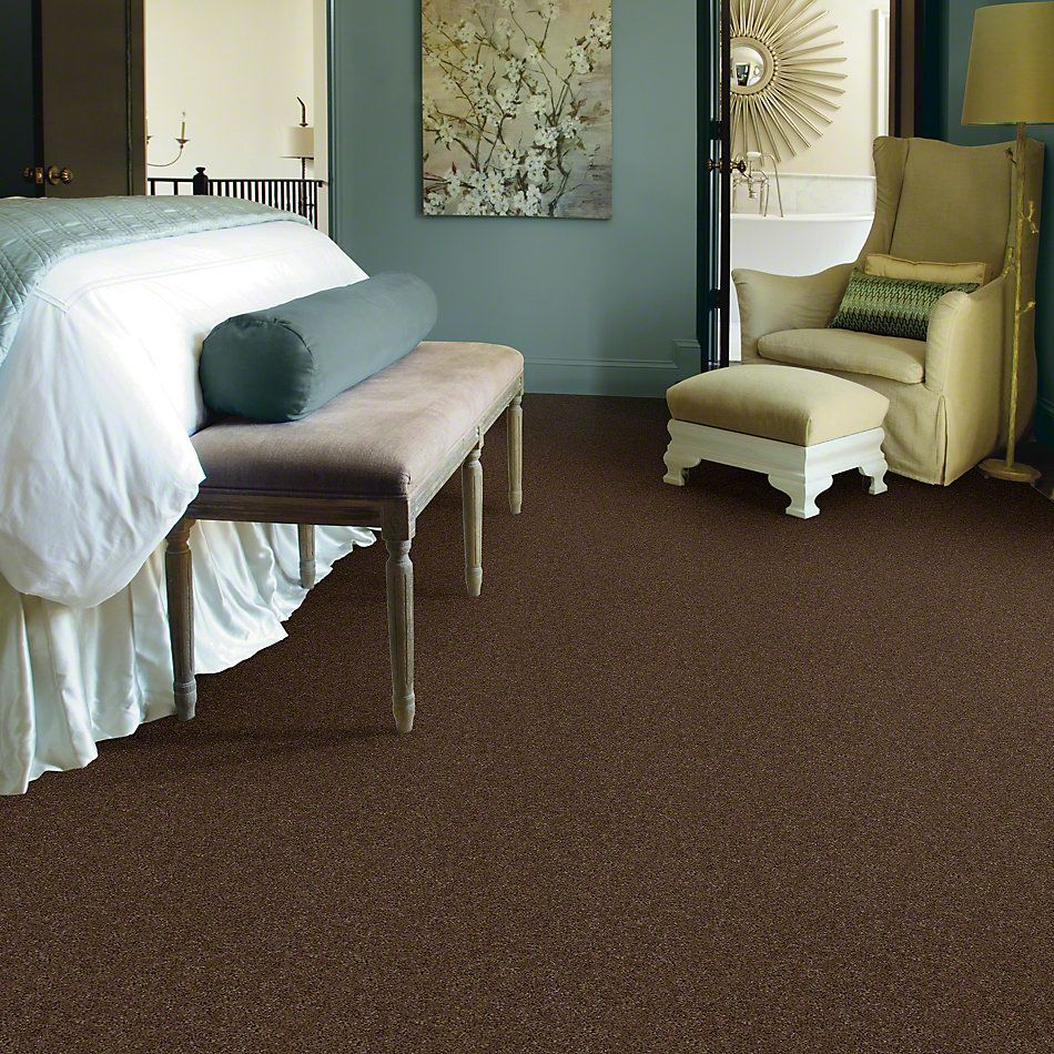 Shaw Floors Shaw Flooring Gallery Beau Rivage Brown Rice 00760_Q334G