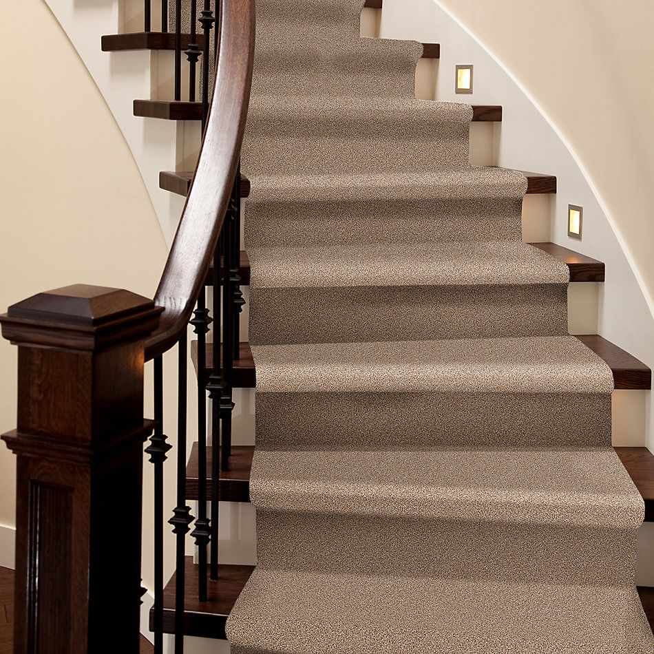 Shaw Floors Value Collections Take The Floor Tonal I Net Sienna 00761_5E072