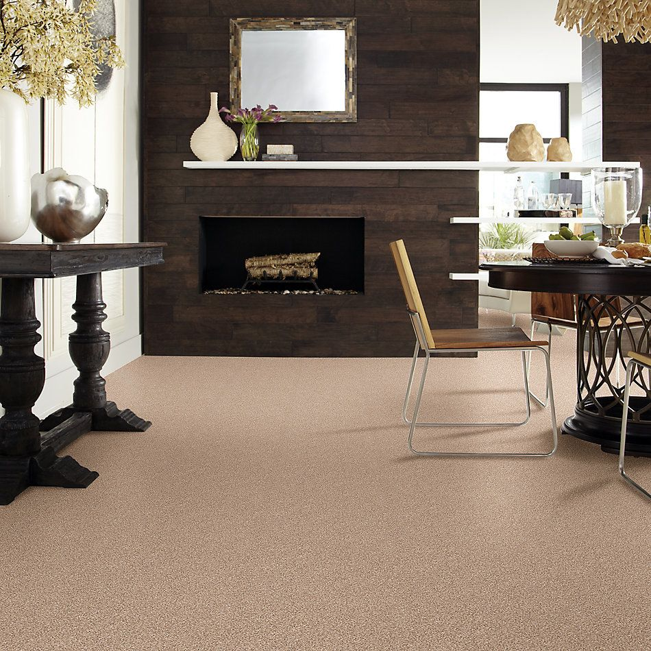 Shaw Floors Value Collections Take The Floor Tonal II Net Sienna 00761_5E073