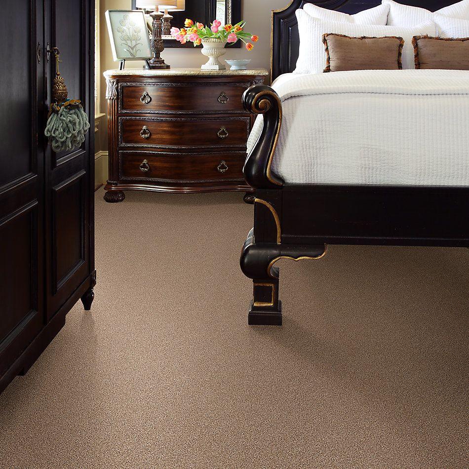 Shaw Floors Foundations Take The Floor Tonal II Net Sienna 00761_5E073