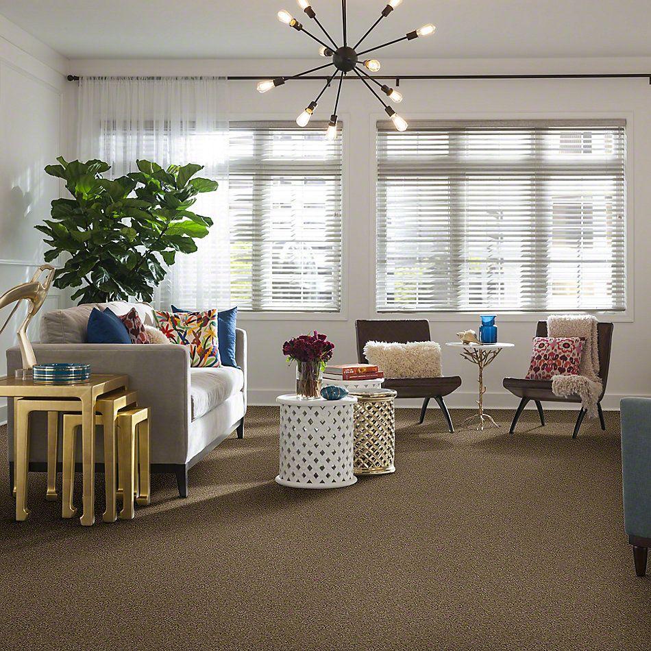 Shaw Floors St Jude Butterfly Kisses III Bird House 00767_JD302