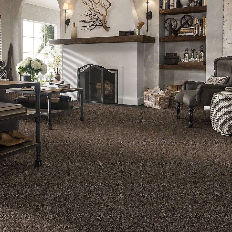 Shaw Floors St Jude Sweet Smiles Townhouse 00769_JD326