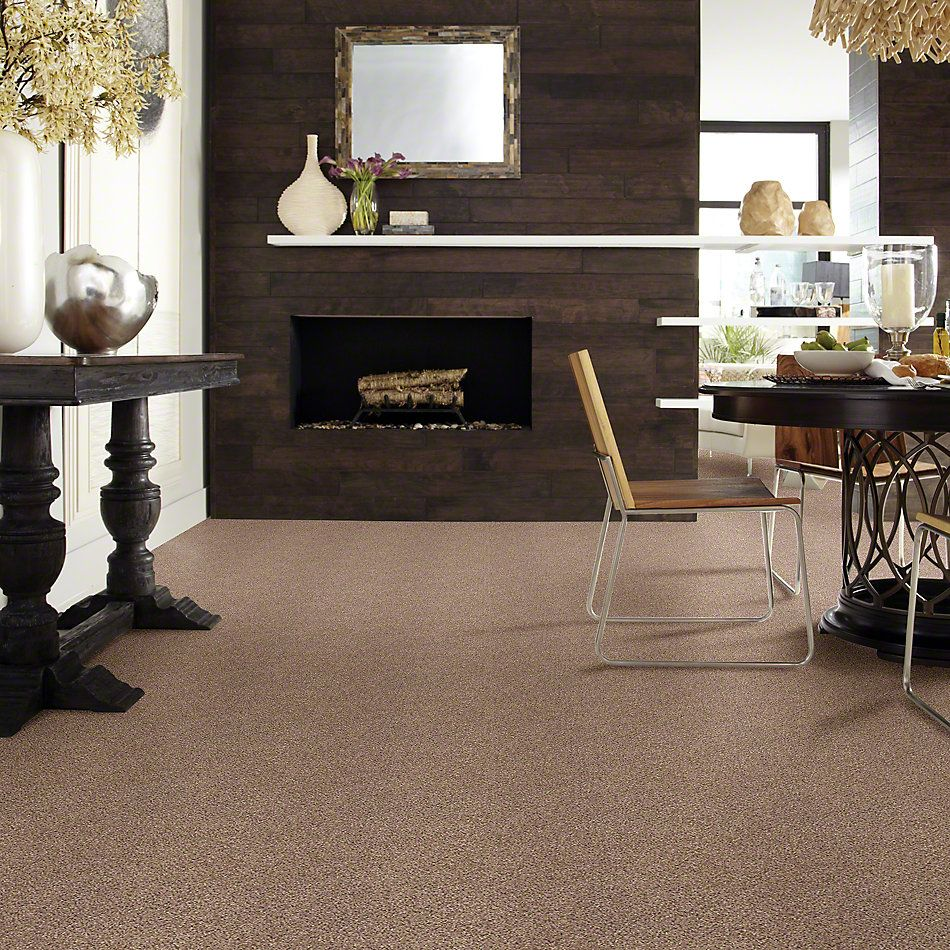 Shaw Floors Take The Floor Accent II Baltic Brown 00770_5E012