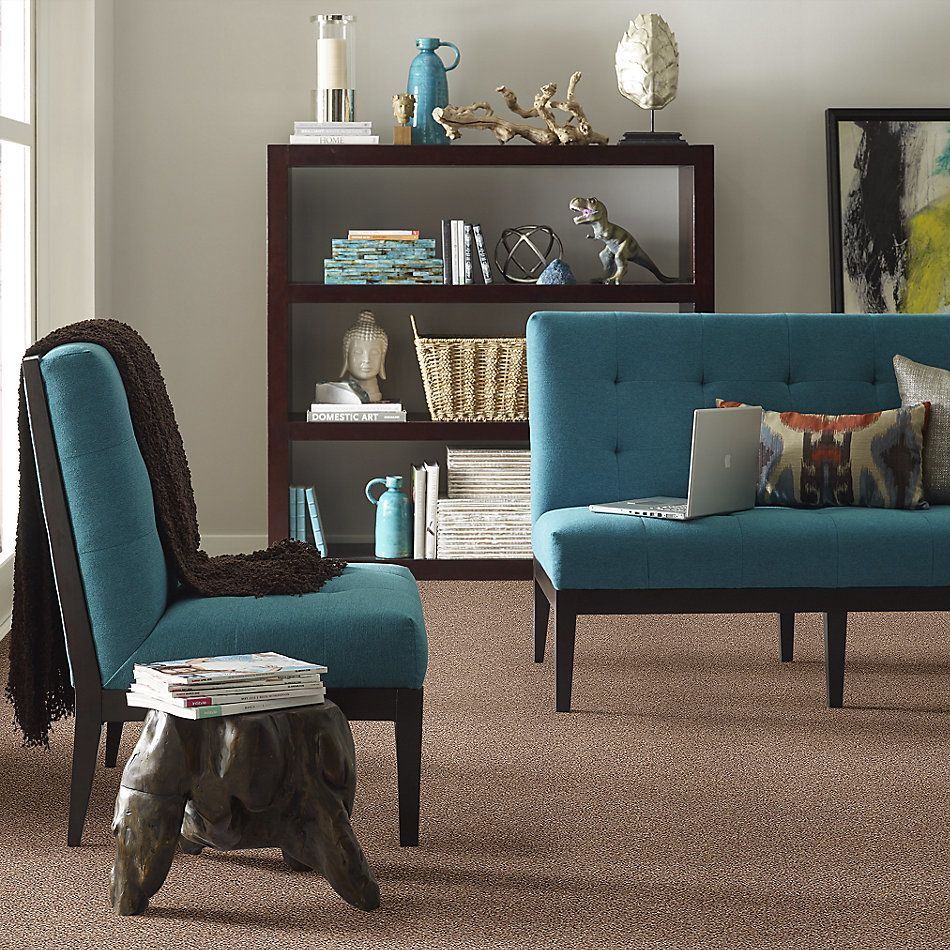 Shaw Floors Value Collections Take The Floor Accent Blue Net Baltic Brown 00770_5E077