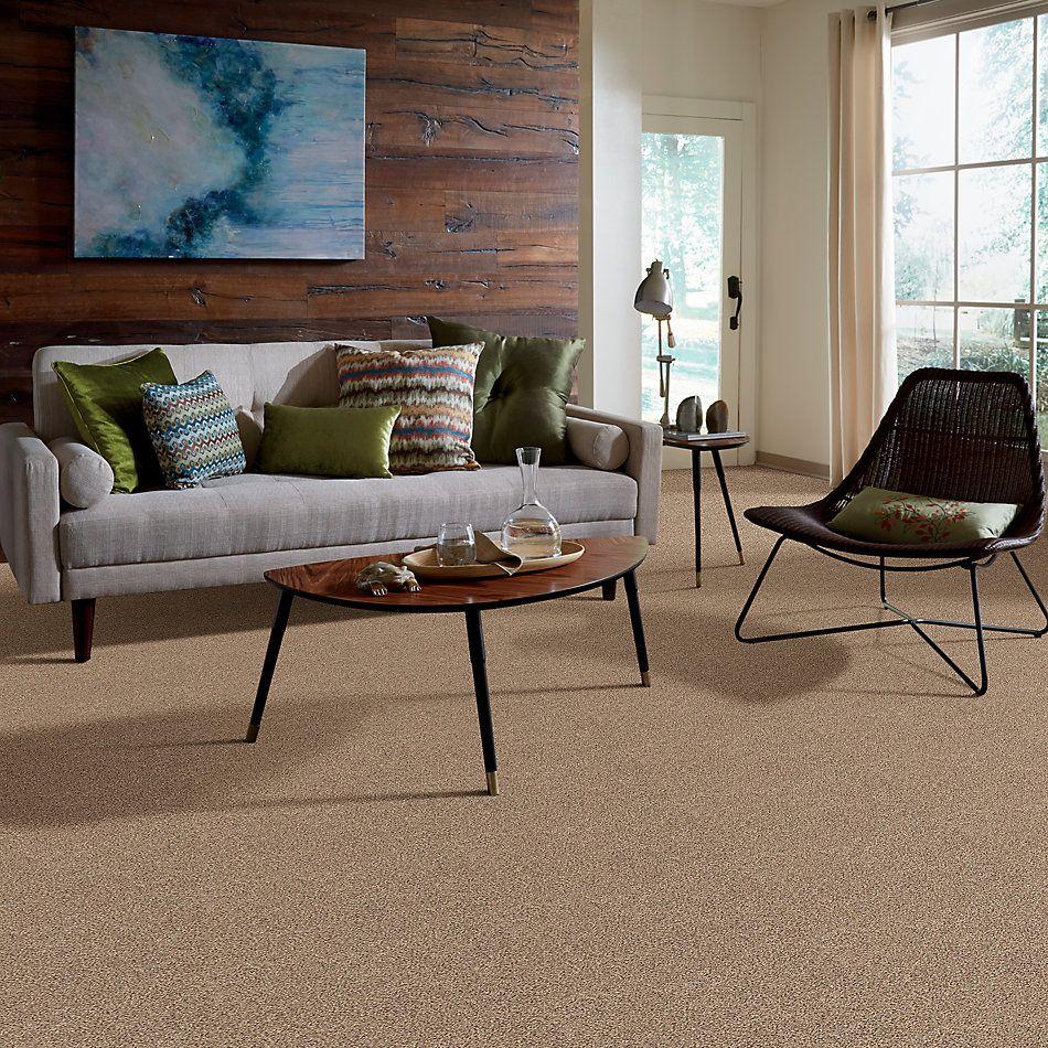 Shaw Floors Foundations Elemental Mix I Net Arrowhead 00770_E9677
