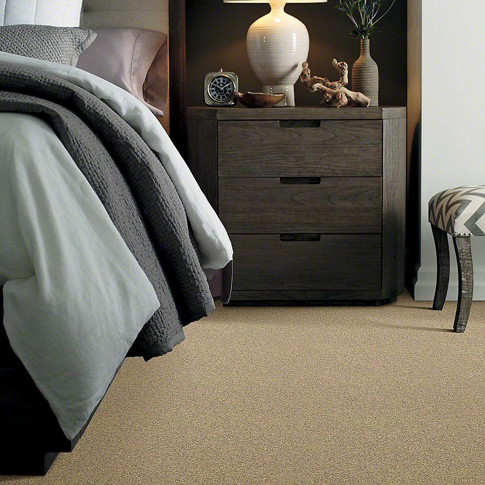 Shaw Floors Anso Colorwall Design Texture Platinum 12′ Beach House 00771_52T73