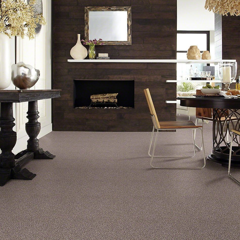 Shaw Floors Take The Floor Accent II Storm 00771_5E012
