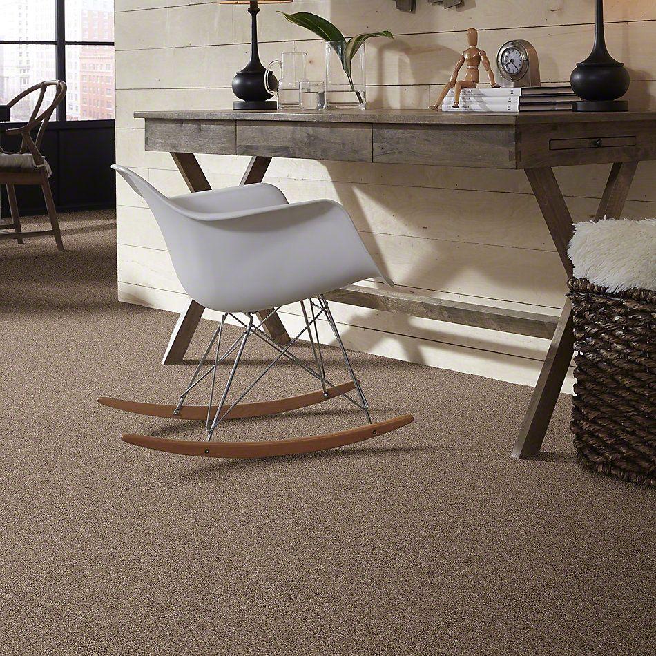 Shaw Floors Elemental Mix I Cobble Drive 00771_E9564