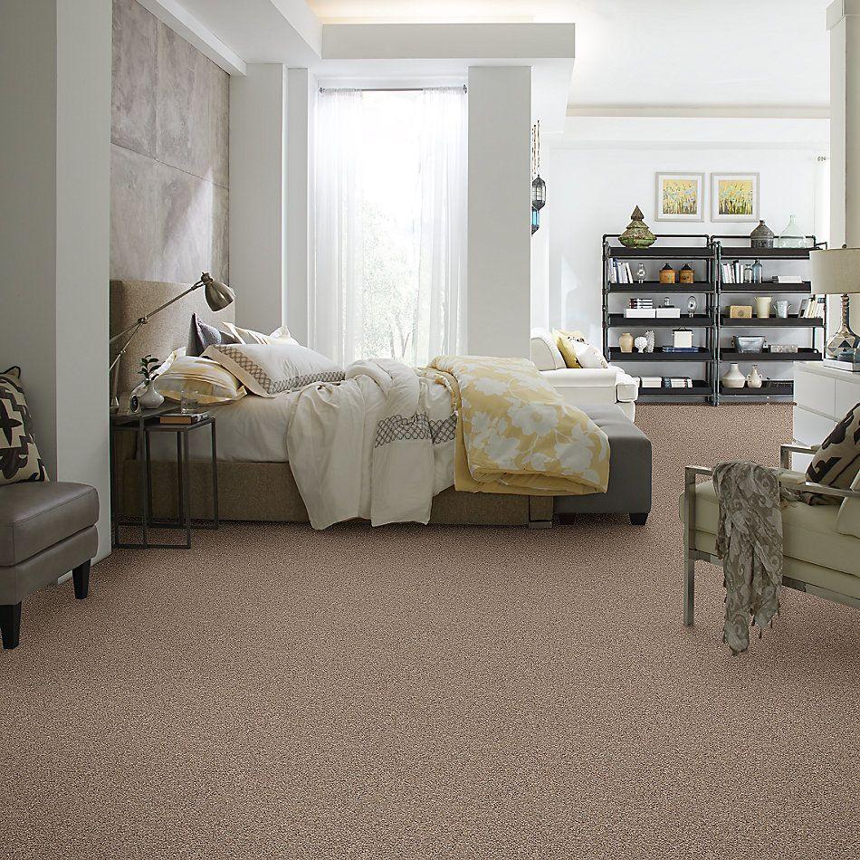 Shaw Floors Foundations Elemental Mix II Net Cobble Drive 00771_E9678