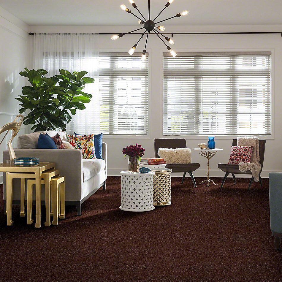 Shaw Floors Cascade II Leather Brown 00774_52350