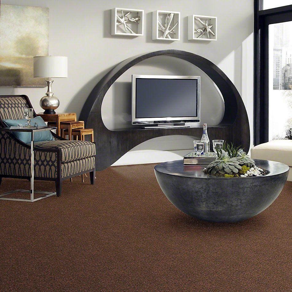 Anderson Tuftex Shaw Design Center My Place Mocha Latte 00776_854SD