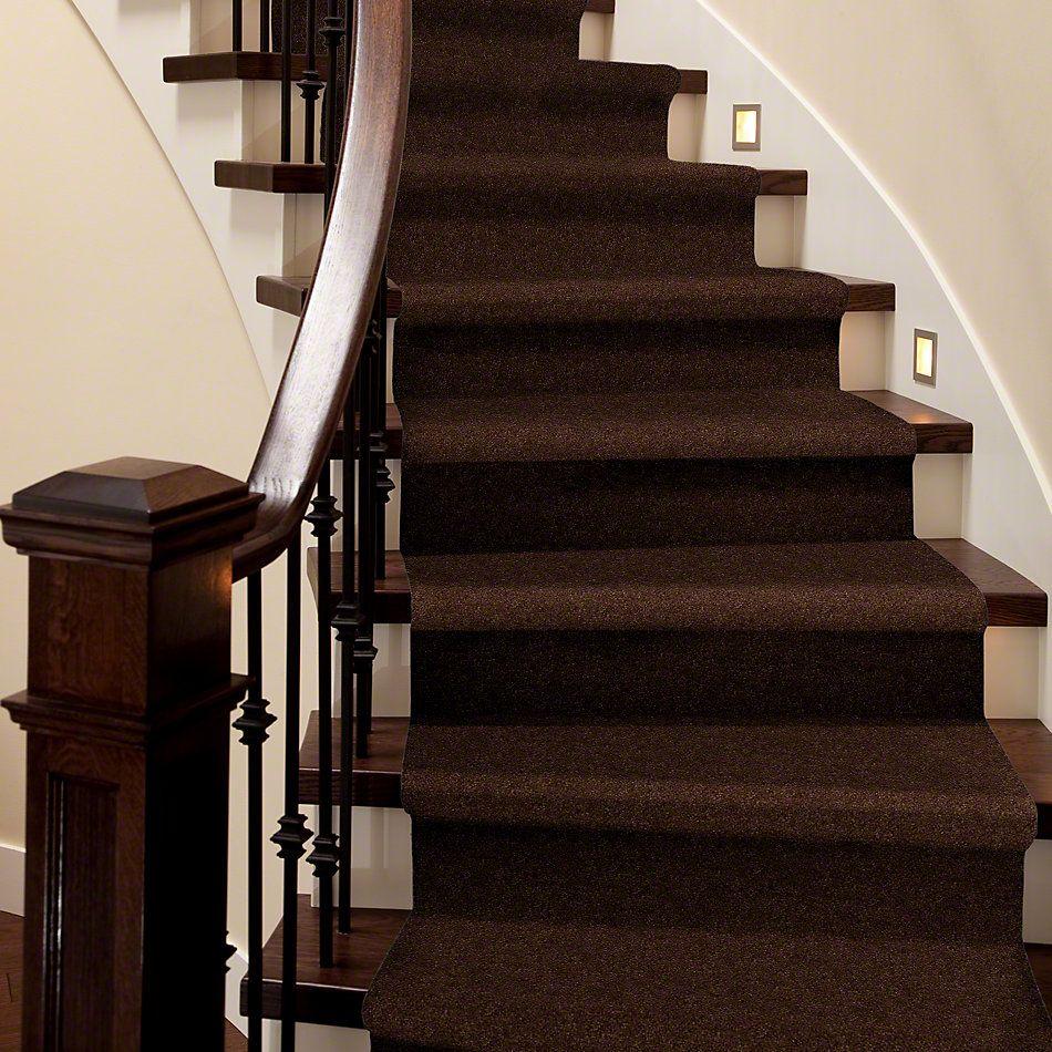 Anderson Tuftex American Home Fashions Devine Delights Decaf 00776_ZA872