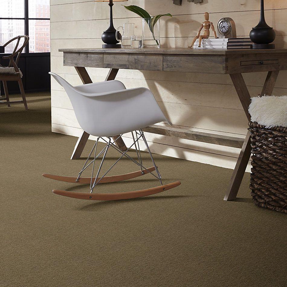 Shaw Floors Foundations Insightful Way Net Summerville 00776_E9772