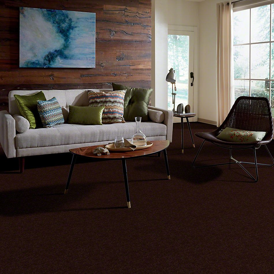 Anderson Tuftex True Inspiration Chestnut 00778_Z6872