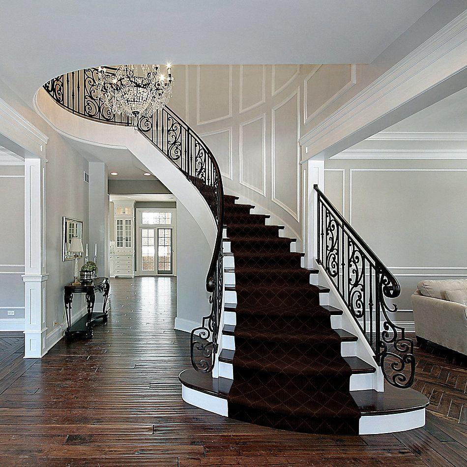Anderson Tuftex Shaw Design Center Living Good Cafe' Noir 00779_874SD