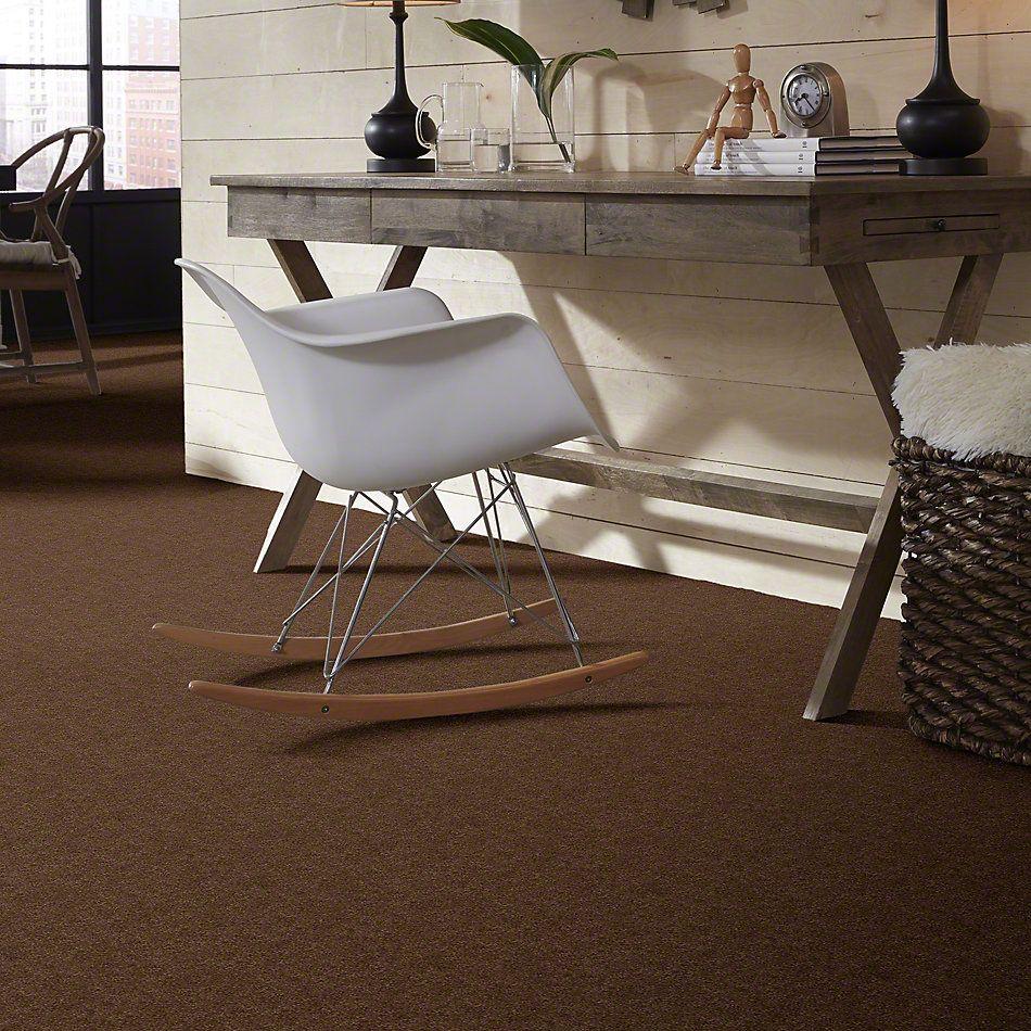 Anderson Tuftex Shaw Design Center Hear It Loud Hot Cocoa 00785_872SD