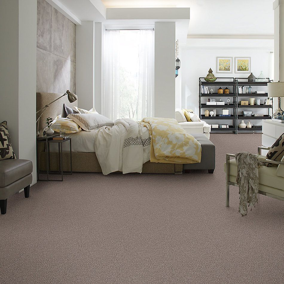 Shaw Floors Value Collections Platinum Texture Tonal Net Landmark 00790_E9333