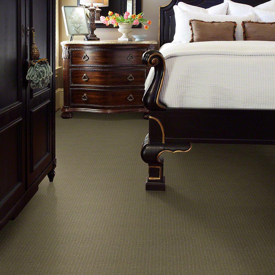 Shaw Floors Foundations Perpetual Move Mocha 00790_E9723