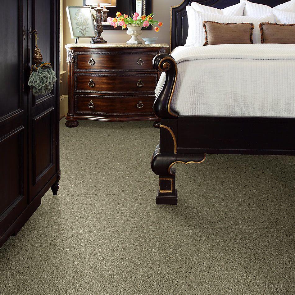 Shaw Floors Wishful Thinking Mocha 00790_NA457