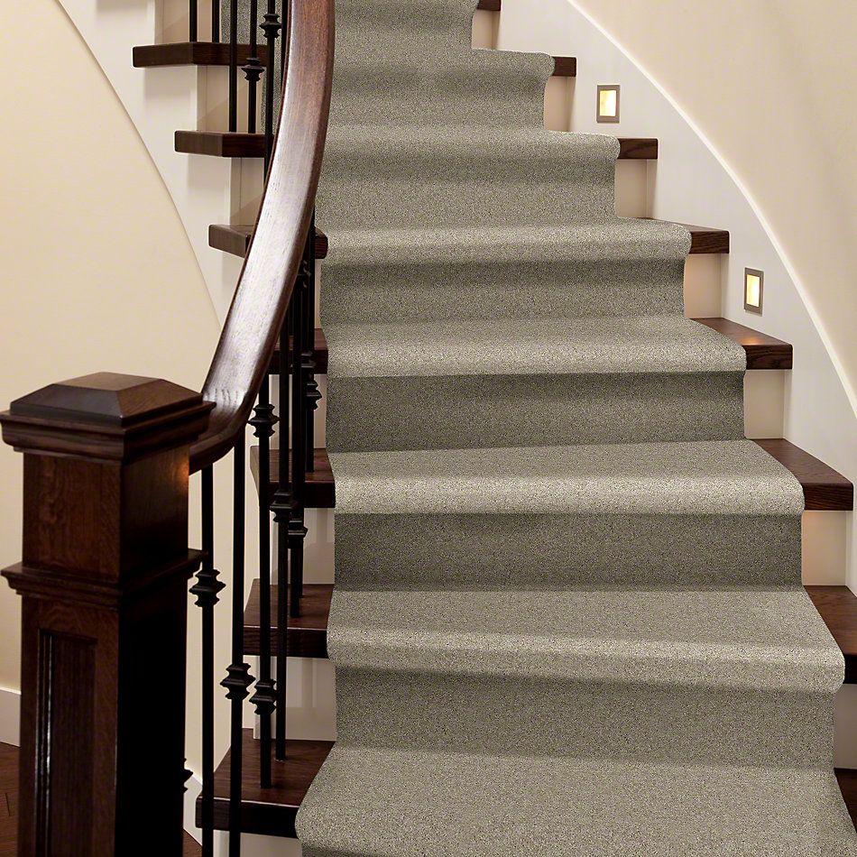 Shaw Floors Shaw Flooring Gallery Essay II Field Khaki 5005G_00793