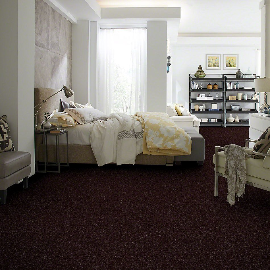 Shaw Floors Queen From The Heart II Fresh Brewed 00796_E0132