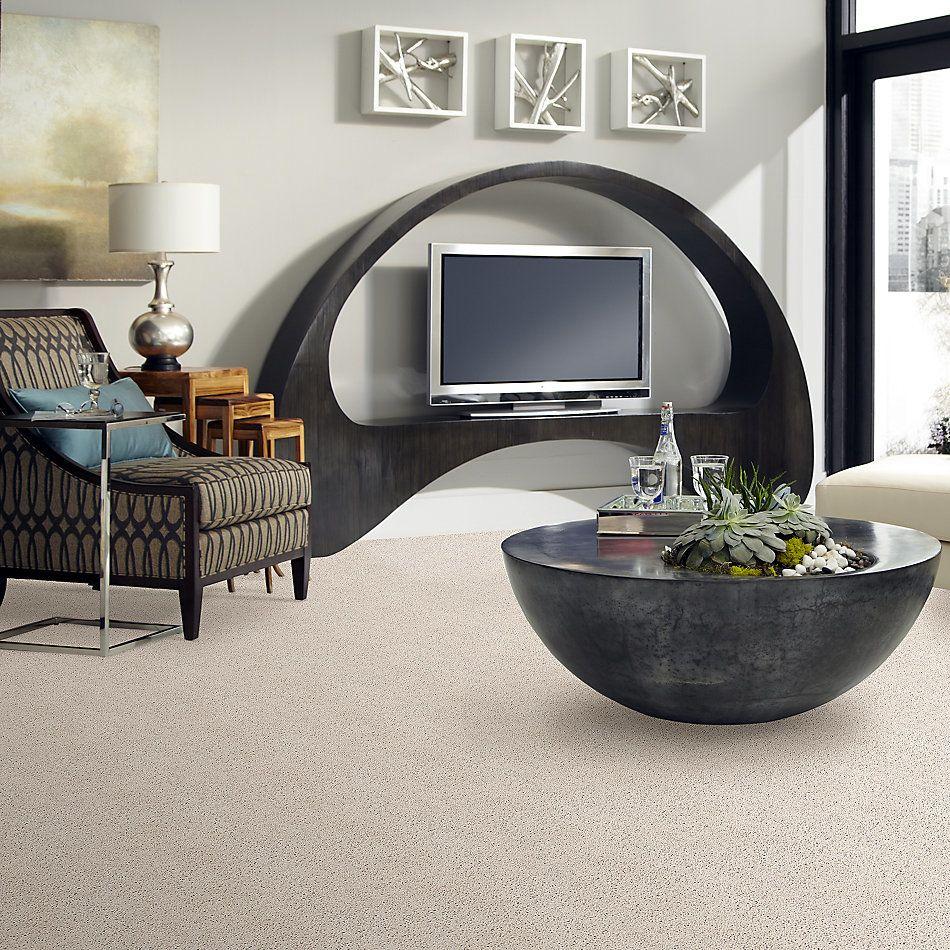 Shaw Floors Caress By Shaw Rich Opulence Net Blush 00800_5E063