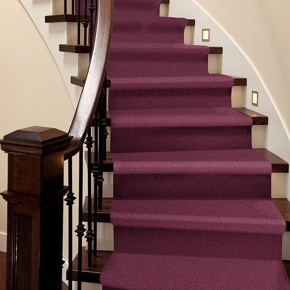 Shaw Floors SFA Vivid Colors III Berry Kiss 00801_0C162