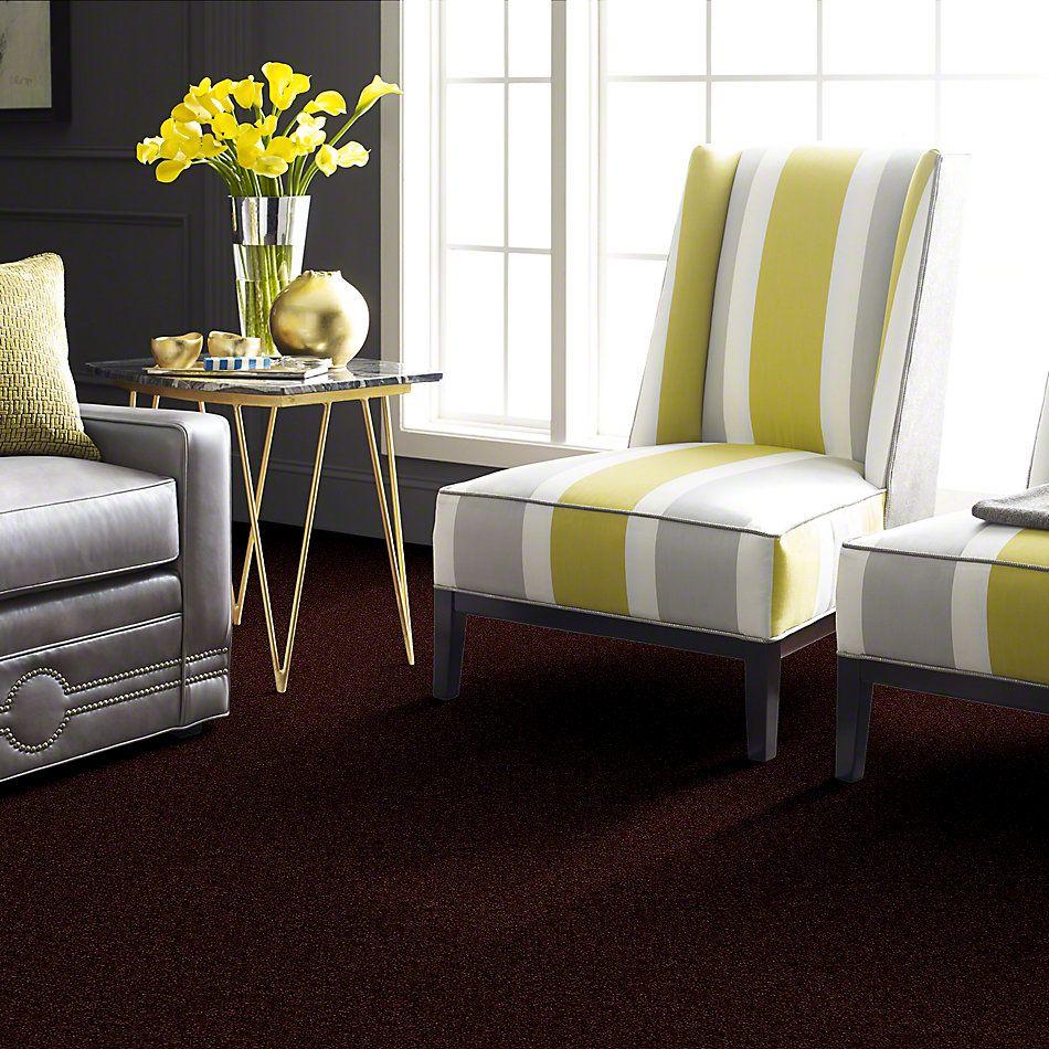 Shaw Floors Vitalize (s) 15′ Dark Cherry 00801_E0277