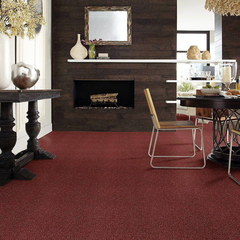 Shaw Floors Value Collections Milford Sound Lg Net Coastal Sunset 00802_CC60B