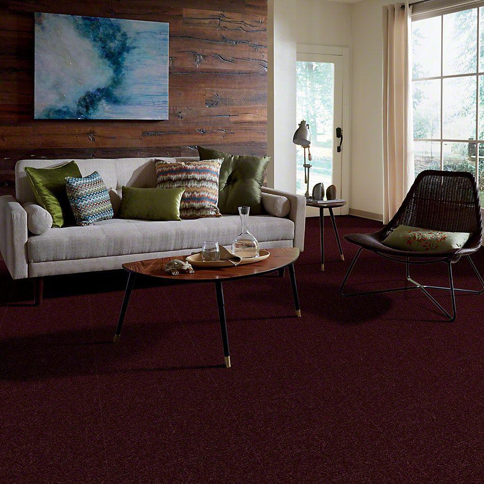 Shaw Floors Shaw Flooring Gallery Highland Cove III 15 Raspberry 00804_5224G