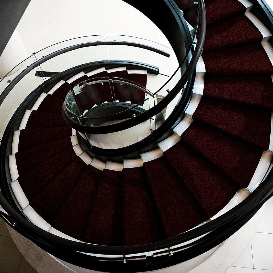 Shaw Floors Queen Harborfields II 12′ Bordeaux 00805_Q4720
