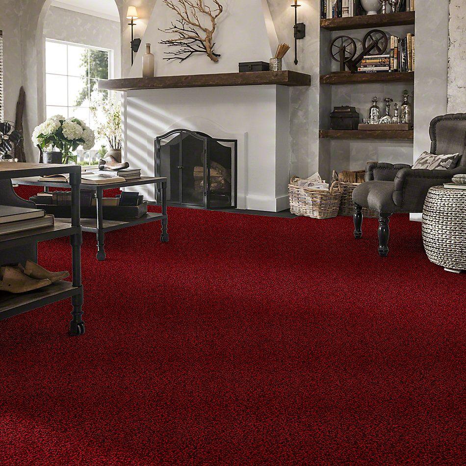 Anderson Tuftex Showbiz Red Carpet 00808_Z6949