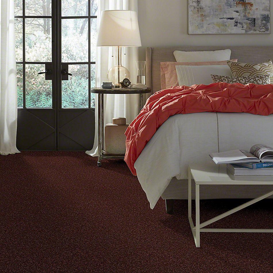 Shaw Floors Thunder Struck (s) Redwood 00810_E0272
