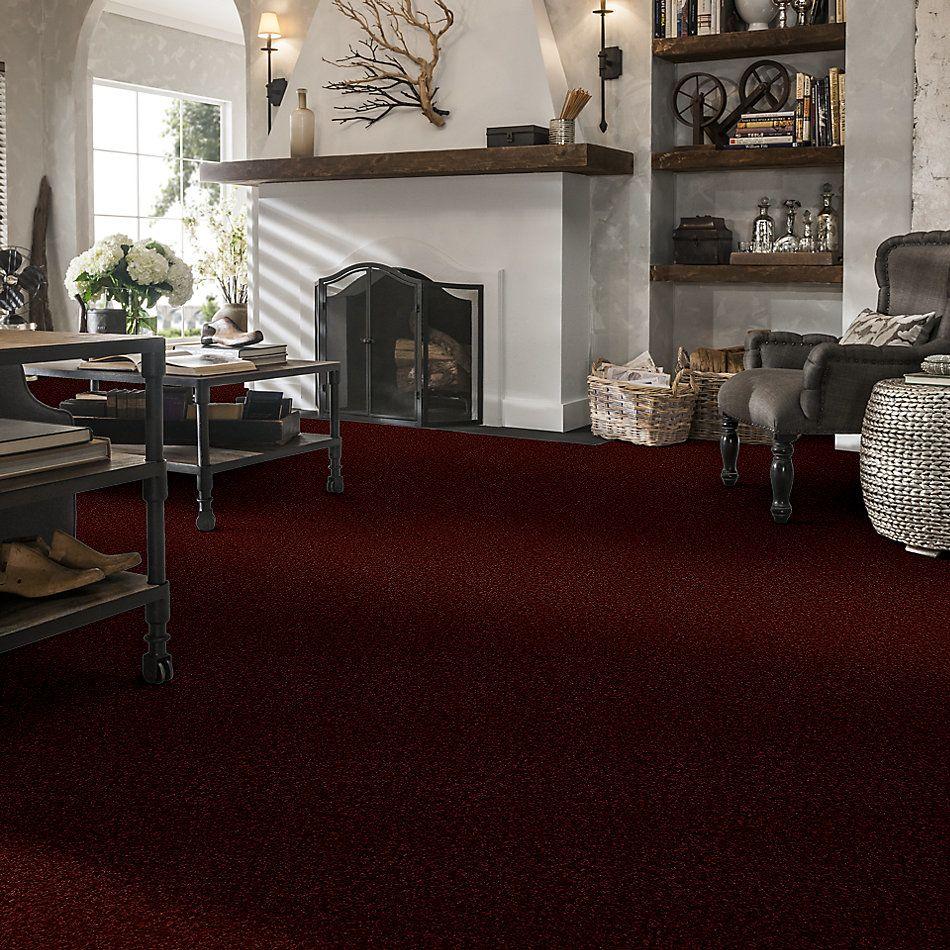 Shaw Floors Shaw Flooring Gallery Ellendale 12′ Red Rock 00821_5273G