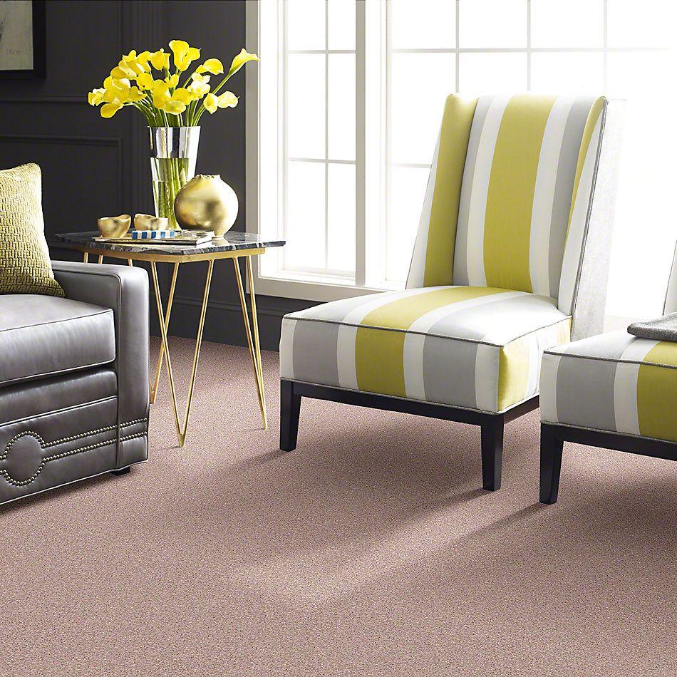 Shaw Floors Anso Colorwall Platinum Twist Daydream 00830_EA576