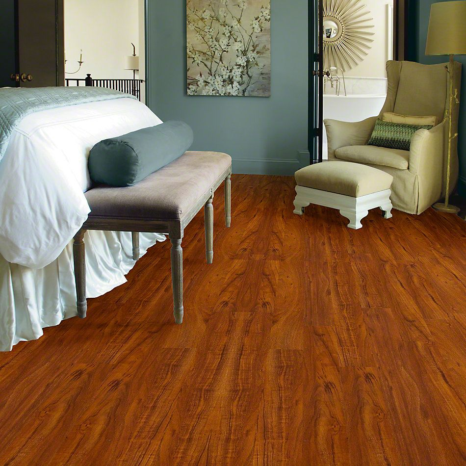 Shaw Floors Shaw Design Center Silk Road Polo 00855_DC323