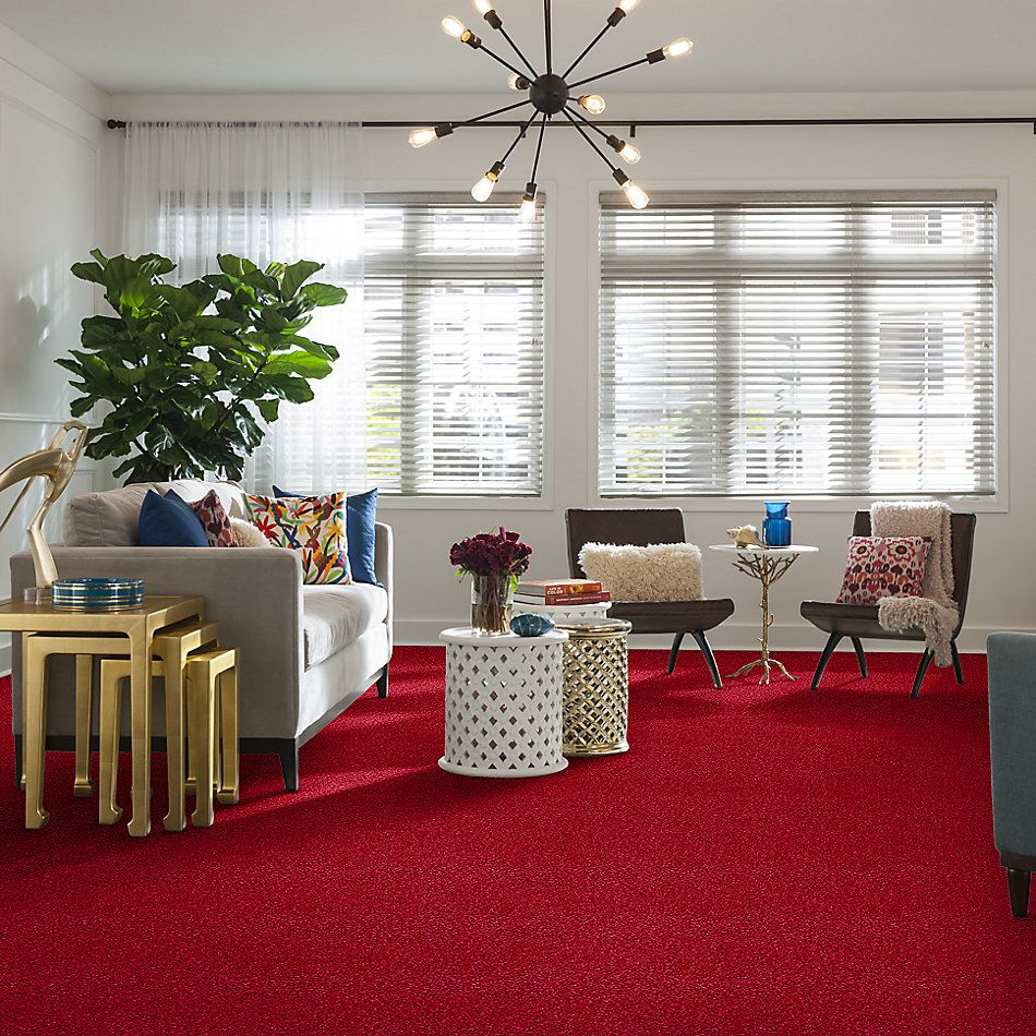 Anderson Tuftex Shaw Design Center Styled Right Hot Ticket 00885_949SD