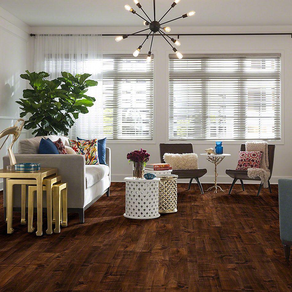 Shaw Floors SFA High Road Mocha 00897_SA565