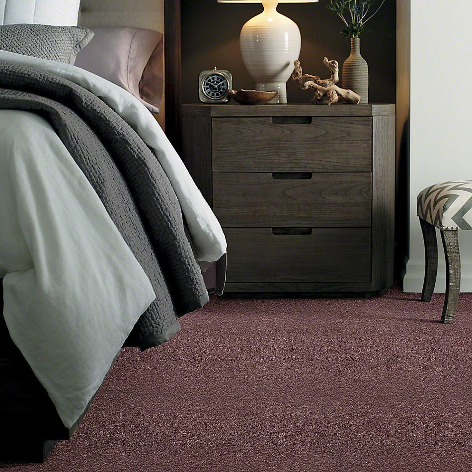 Shaw Floors Enduring Comfort II Grape Fizz 00900_E0342