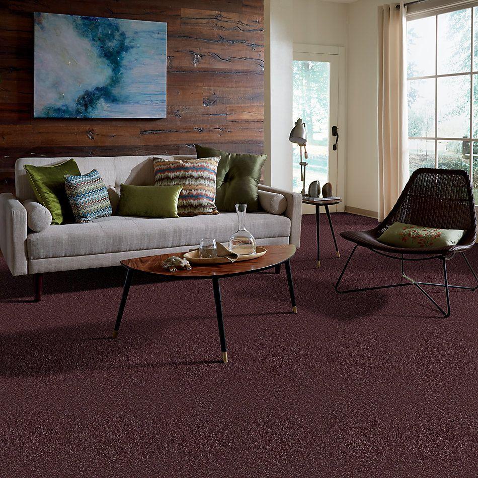 Shaw Floors SFA Ocean Pines 12′ Amethyst Sky 00900_EA041
