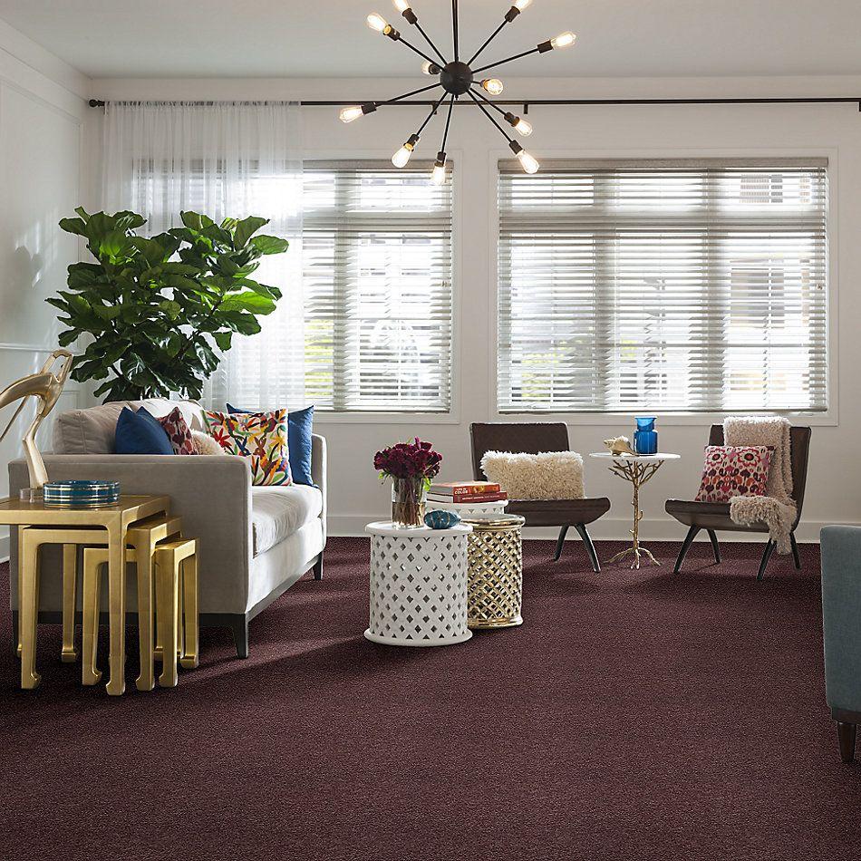 Shaw Floors Shaw On Shelf Playa Blanca Grape Fizz 00900_SOS81
