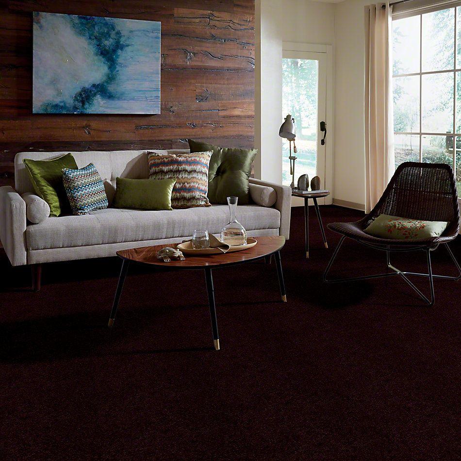 Shaw Floors Town Creek I 15′ Concord 00901_52V12