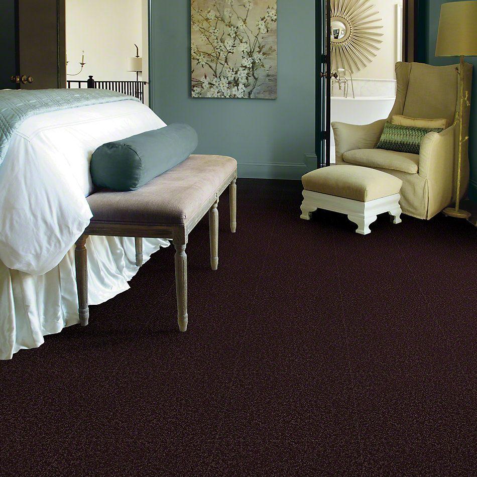 Shaw Floors Shaw Flooring Gallery Union City I 15 Royal Purple 00902_5303G
