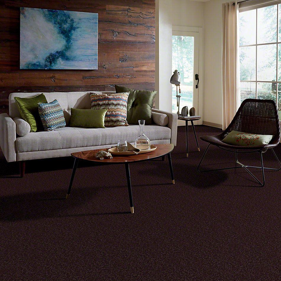 Shaw Floors Shaw Flooring Gallery Union City II 12′ Royal Purple 00902_5306G