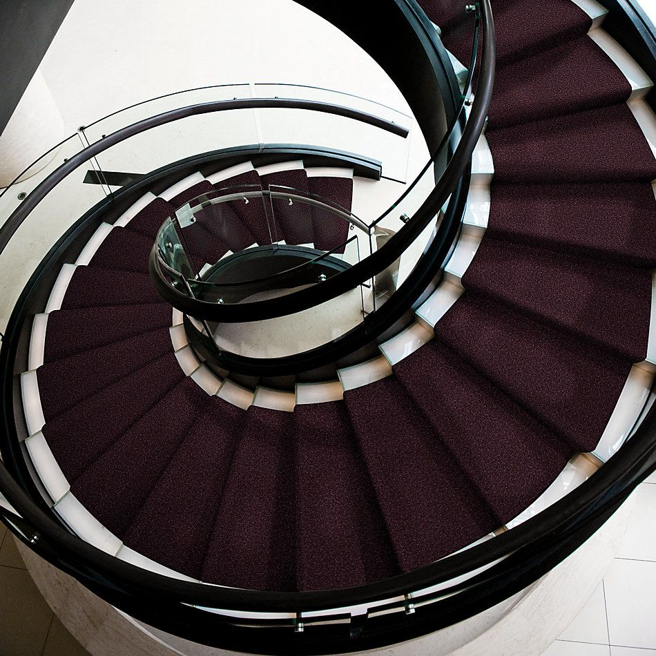 Shaw Floors All Star Weekend I 12′ Royal Purple 00902_E0143