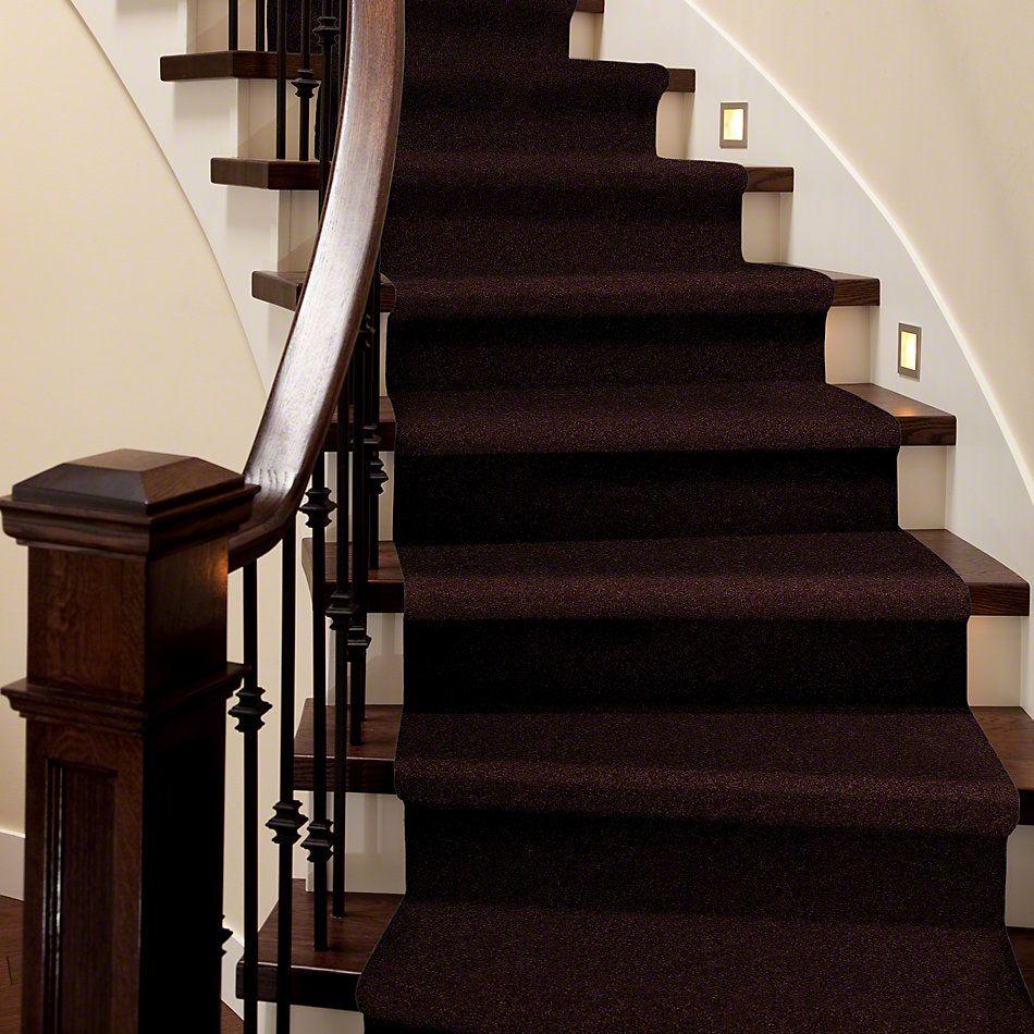 Shaw Floors SFA Loyal Beauty II Plum Delight 00902_EA163