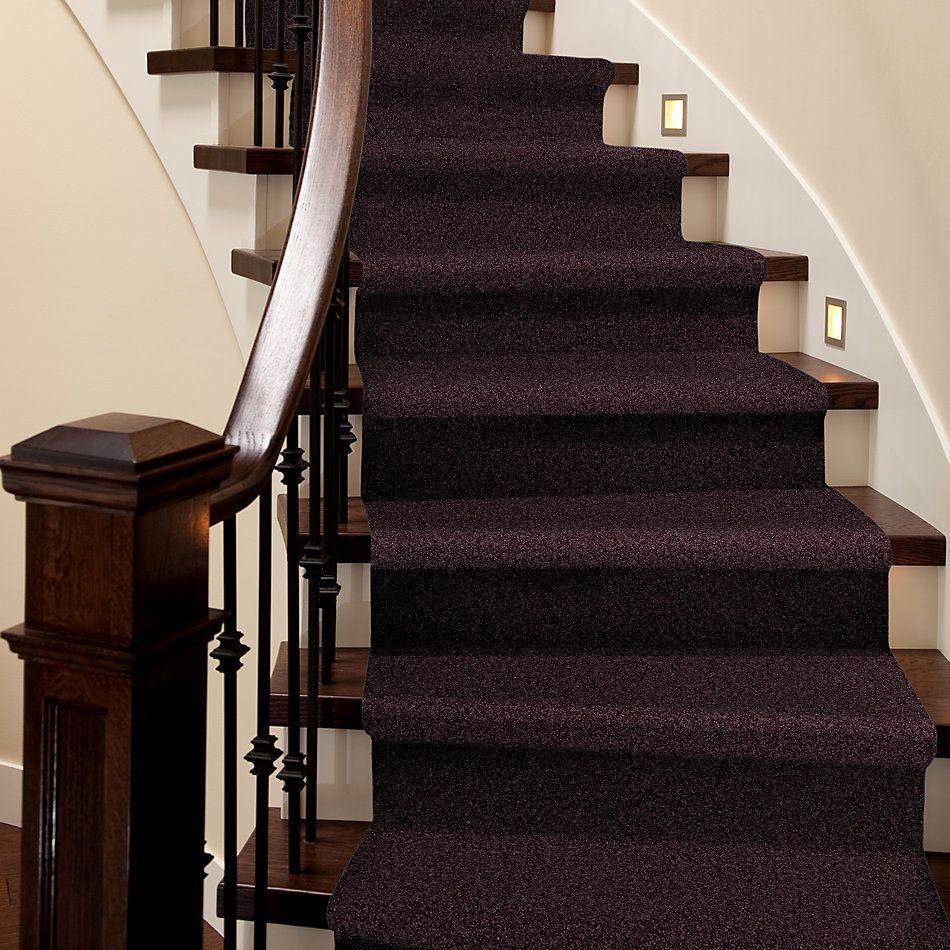 Shaw Floors Roll Special Xv375 Royal Purple 00902_XV375