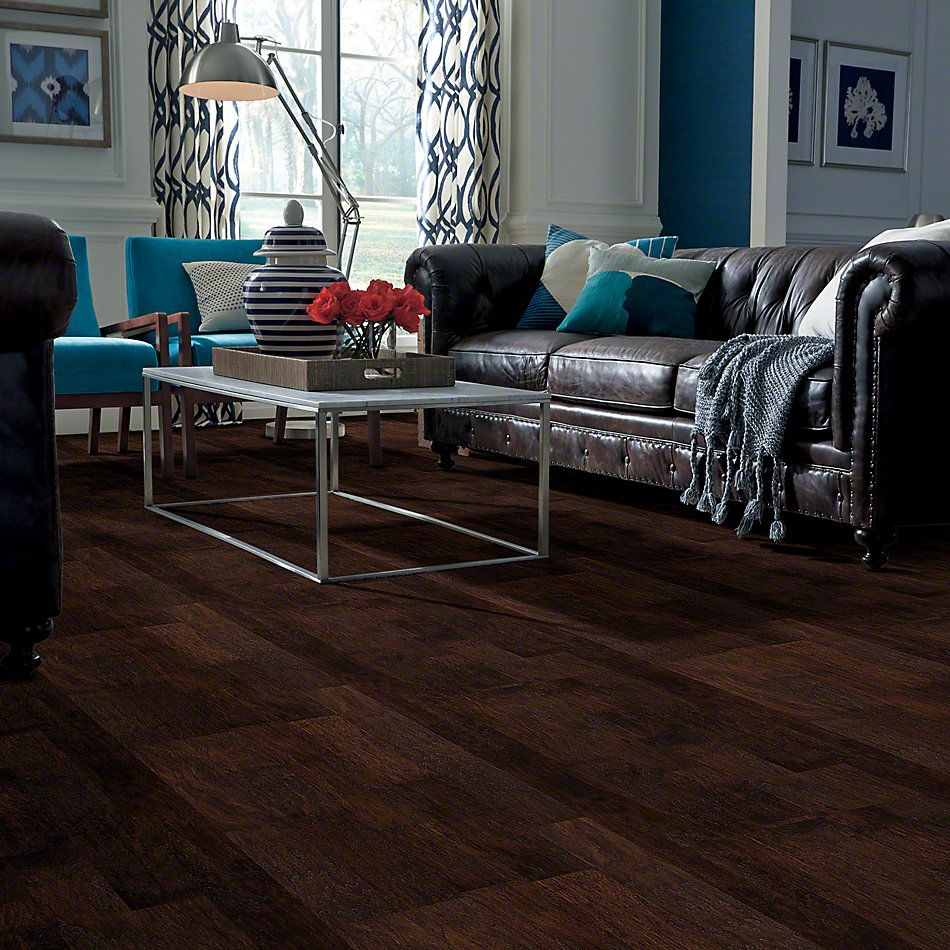 Shaw Floors SFA Champion Hill Espresso 00917_SA029