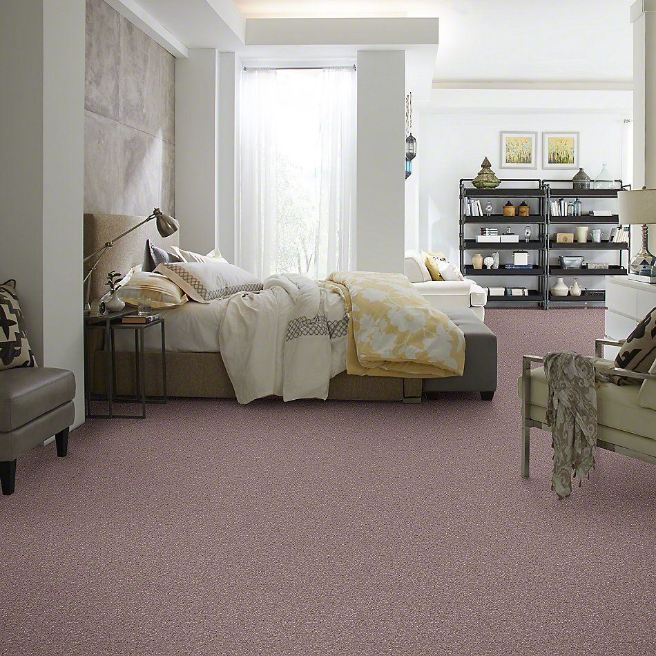 Shaw Floors Caress By Shaw Quiet Comfort Classic I Heather 00922_CCB96